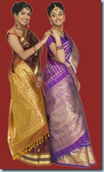 nalli silks Saree