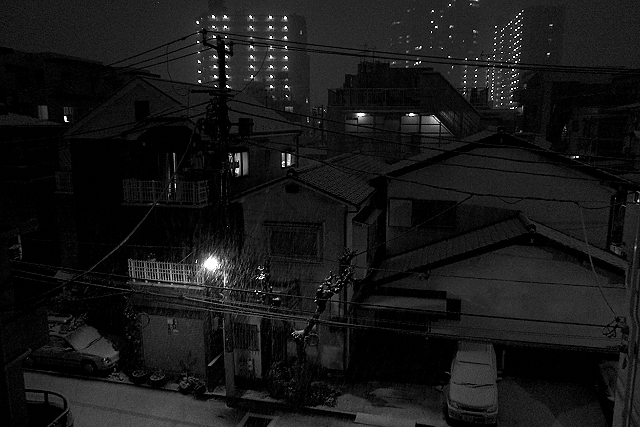 Shinjuku Mad - Radiating with snow 06