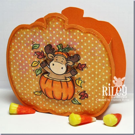 Riley-Pumpkin-Box-wm