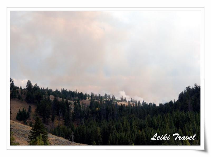 黃石公園森林大火