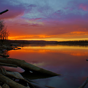 Across the Golden Pond by Dustin White - Landscapes Sunsets & Sunrises ( water, clouds, reflection, sunset, trees, lake, vibrant,  )