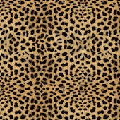Moving Cheetah Print Live Wall