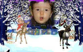 Vianoce v lese ZGLy-13n.jpg