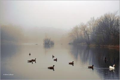 Lake_Final