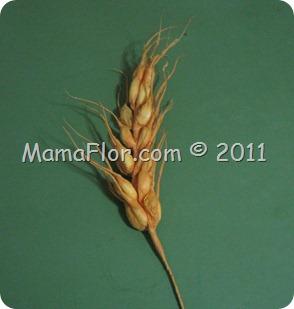 mamaflor-0419