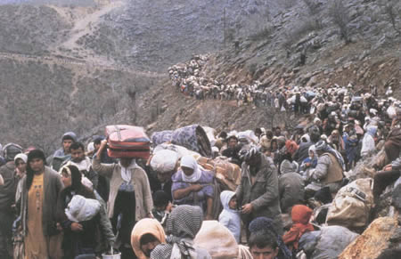 8 terrorism migration Global Warming dan Akibatnya