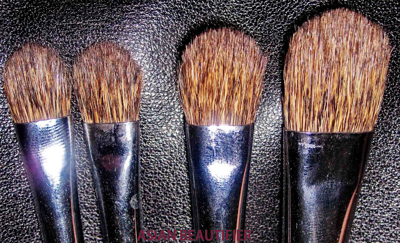 Sleek Brush Set - Professional