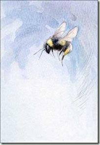 single bee sm