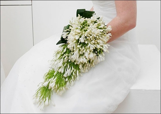 weddings11 pollen nation uk