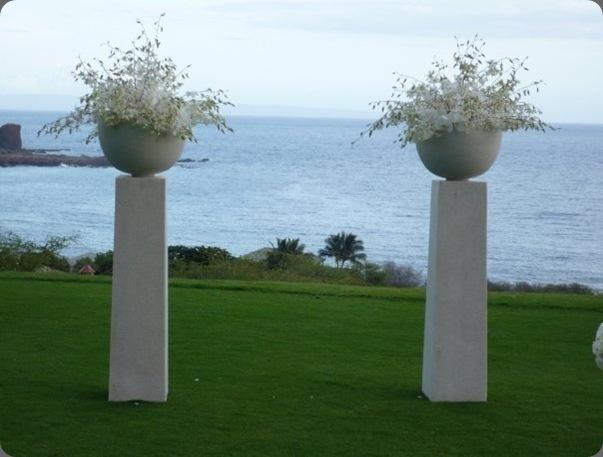 anny heid flowers