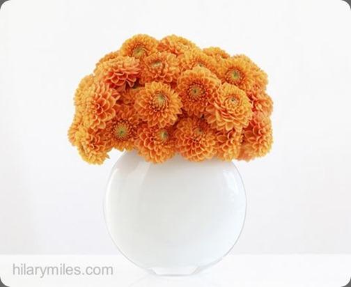 hilary miles flowers14