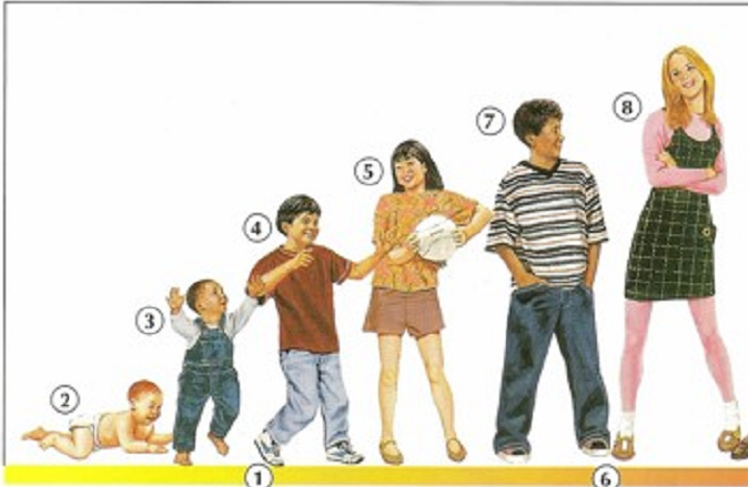 This guide is intended to provide an estimate for common 2- to 3-year-old development, including things like how tall is the average 3 year old, but you will need to consider the unique context of your child's development as you try to anticipate the changes in your child.