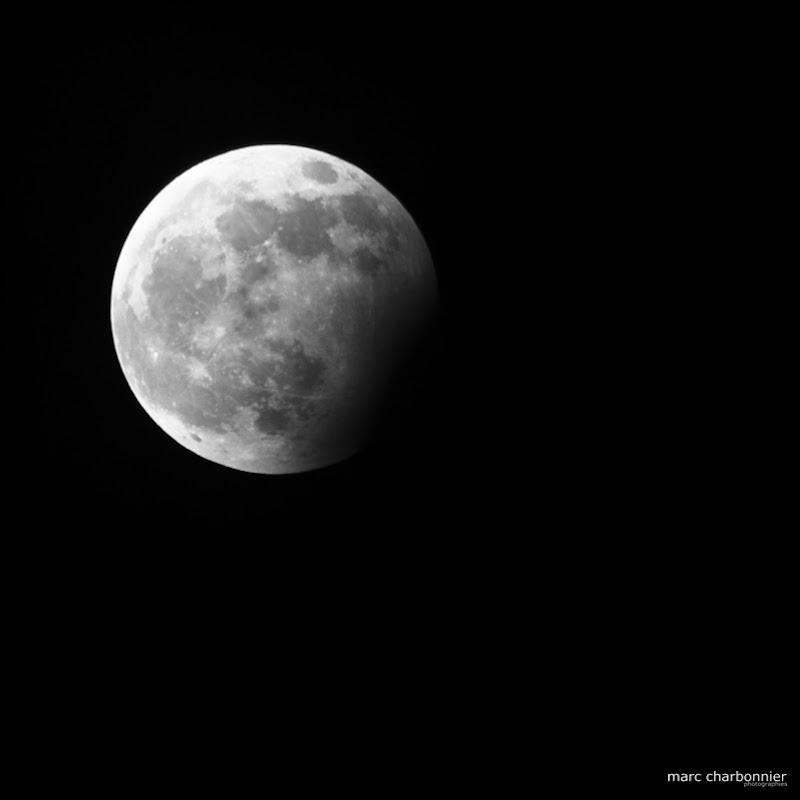 éclipse lune 311209-1.jpg