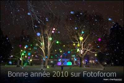 Festival arbres et lumières 2009