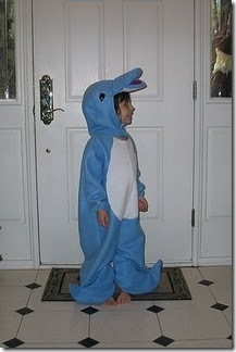 dolphin(1)