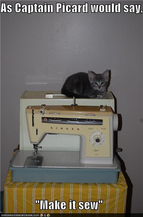 photo of a cat sitting above a sewing machine saying make it sew