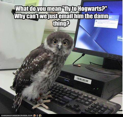 photo of an owl in front of a computer saying why fly to hogwarts just email him