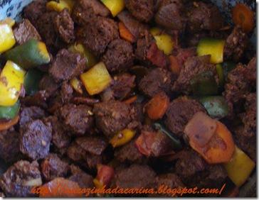 carne-de-soja-da-carina01