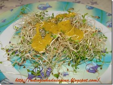 saladinha-de-broto-de-alfafa