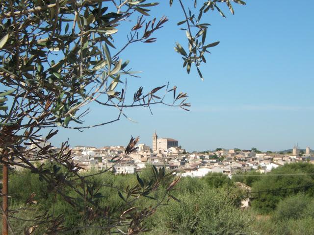 Finca Ferienhaus für 4-8 Personen in Santa Margalida/ Can Picafort, Mallorca