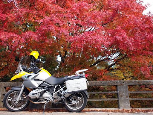 [写真]清山荘(1)