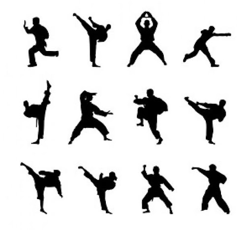Learn Kung Fu at home