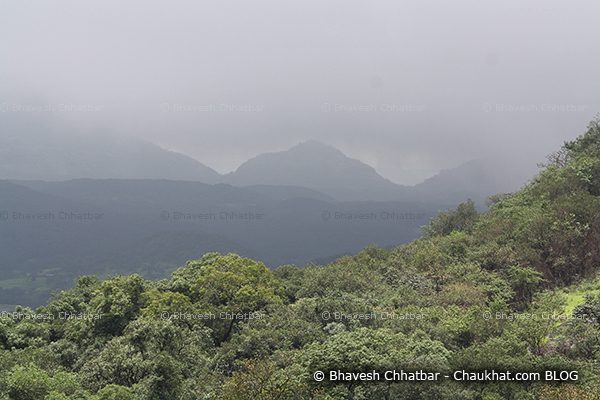 Sunlight, shadows, clouds, mist, forest — all at one place in Bhimashankar