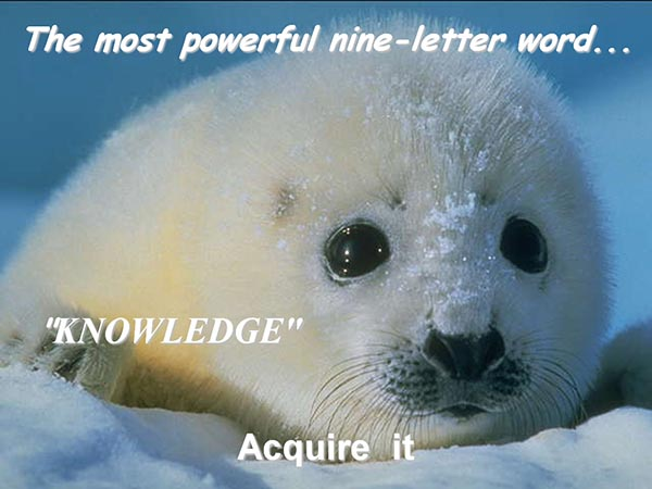 The most powerful nine-letter word - Knowledge - Acquire it