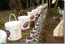 Prepativo Horta Organica Suspensa 4 22-03-10