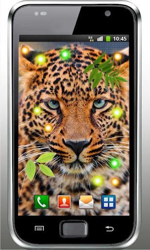 Jaguar Gallery live wallpaper