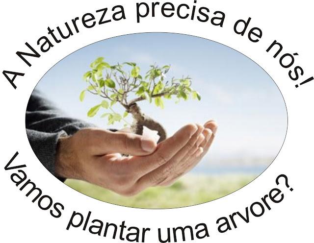 Resultado de imagem para plantar árvores