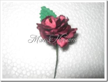 mamaflor-4764
