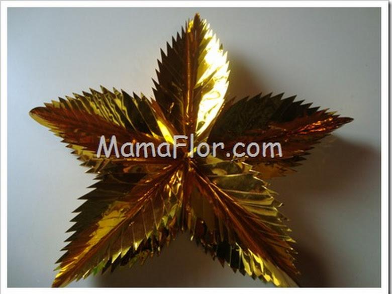 Estrella de Navidad-9790