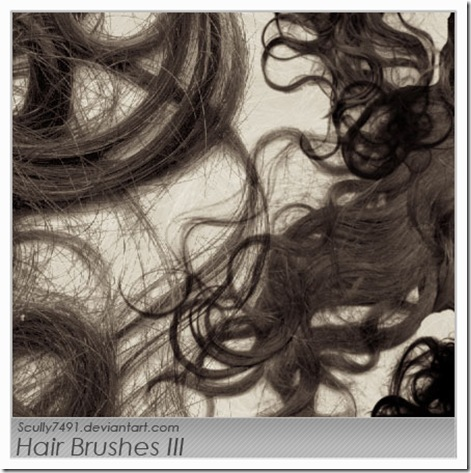 Hair_Brushes_III_by_Scully7491