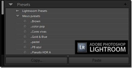 Presets adobe Lightroom