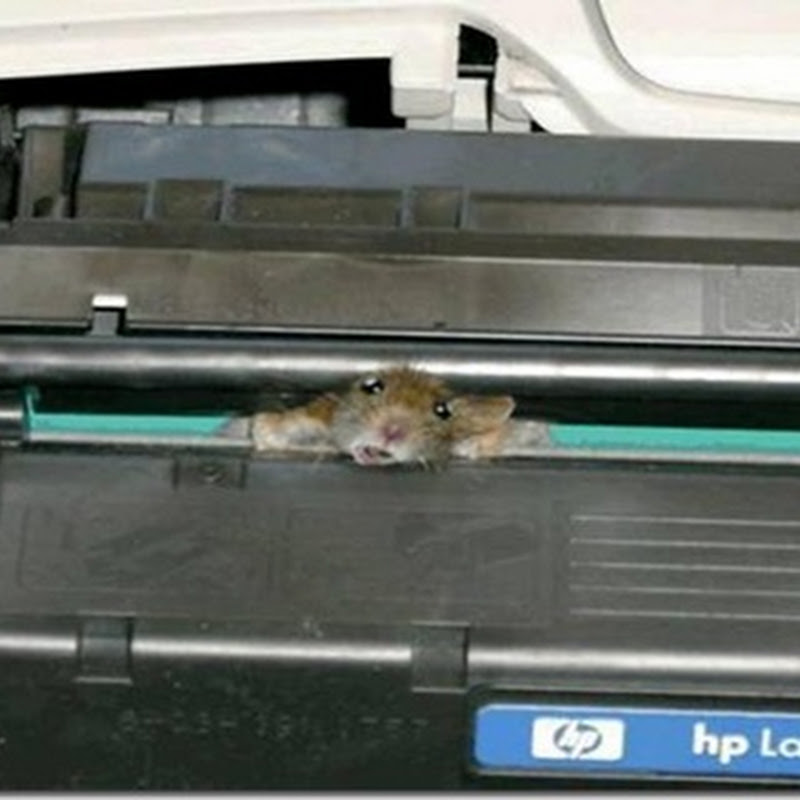 Printer not in working order....>>>>