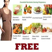 Pregnant Womens Food Guide