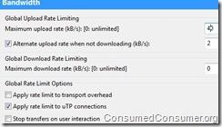 Downloading FTW: torrent setup for a healthy connection