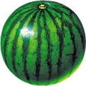 watermelon prober icon