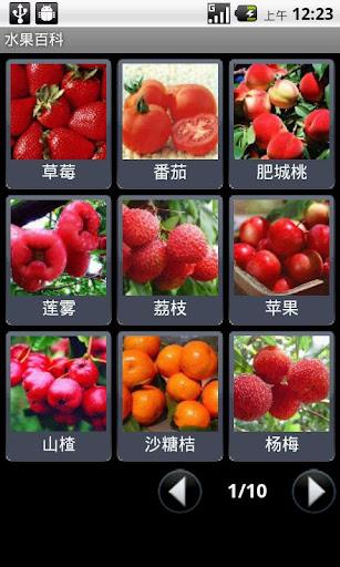 蔬菜水果名稱大全 - 真笔繁体字转换器 QQ繁体字大全 真笔字网