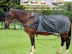 Driving Horse Ware Quater Sheets