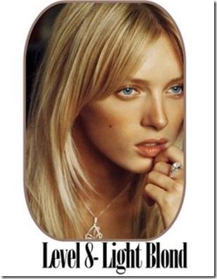 level 8 blond 876