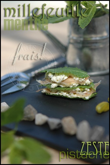 menthemillefeuille1 copie