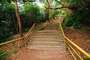 Neverending Steps to Mount Tapyas