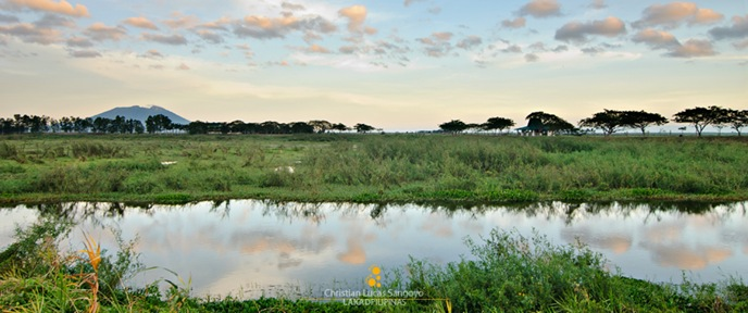 Candaba Wetlands Panorama
