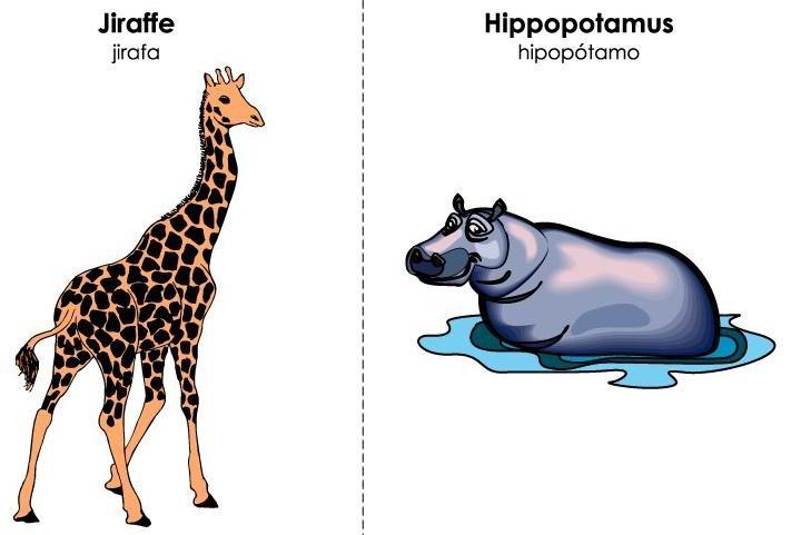 tarjetas ilustradas vocabulario inglés (36)