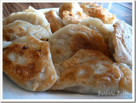 Chinese Dumplings Potstickers