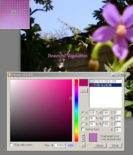 Pixeur Colour Picker from external image