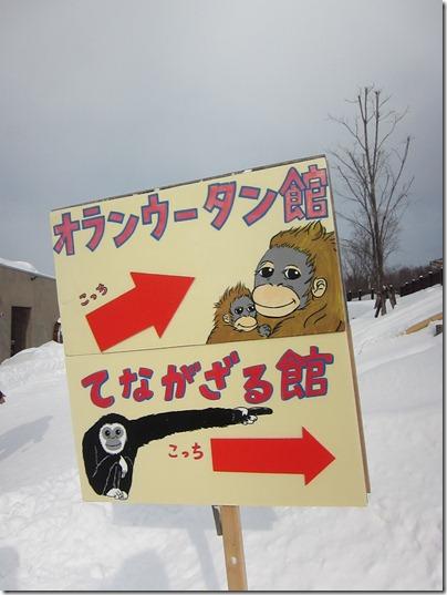 Asahikawa: Asahiyama Zoo — Kai Herng Loh