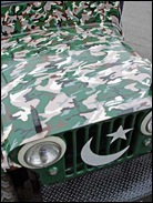 Pakistani Painted Truck 04